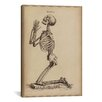 iCanvas 'A Praying Skeleton' by William Cheselden Graphic Art on Canvas