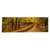 <strong>iCanvasArt</strong> Panoramic Autumn Road, Emery Park, New York Photographic Print on Canvas