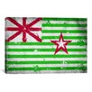 <strong>iCanvasArt</strong> Austin, Texas Flag - Grunge Painted Graphic Art on Canvas