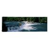iCanvasArt Panoramic Bears Fish Brooks Fall Katmai AK Photographic Print on Canvas