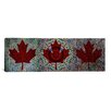 iCanvas Canadian Flag, Maple Leaf Panoramic #2 Graphic Art on Canvas