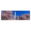 iCanvas Panoramic Cherry Blossoms Washington Monument Photographic Print on Canvas
