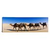 iCanvas Panoramic Camels Walking in the Desert Photographic Print on Canvas