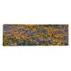 <strong>iCanvasArt</strong> Panoramic Table Mountain, California Photographic Print on Canvas