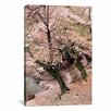 iCanvas 'Cherry Blossom Lane' by Monte Nagler Painting Print on Canvas