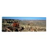 <strong>iCanvasArt</strong> Panoramic Aloe Growing at the Edge of a Canyon, Fish River Canyon, Namibia Photographic Print on Canvas