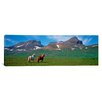 iCanvasArt Panoramic Horses Standing and Grazing in a Meadow, Borgarfjordur, Iceland Photographic Print on Canvas