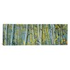iCanvasArt Panoramic Aspen Trees in a Forest, Rock Creek Lake, California, USA Photographic Print on Canvas