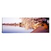 <strong>iCanvasArt</strong> Panoramic Tidal Basin, Washington D.C, District of Columbia Photographic Print on Canvas