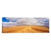 iCanvasArt Panoramic Wheat Field Washington Photographic Print on Canvas