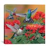"iCanvas ""Hummingbirds and Flowers"" Canvas Wall Art by William Vanderdasson"