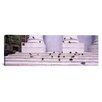 iCanvas Panoramic Flock of Pigeons on Steps, San Francisco, California Photographic Print on Canvas
