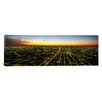 iCanvasArt Panoramic Evening Chicago, Illinois Photographic Print on Canvas