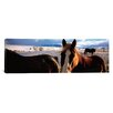 <strong>iCanvasArt</strong> Panoramic Horses in a Field, Montana Photographic Print on Canvas