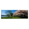 <strong>iCanvasArt</strong> Panoramic Cherry Blossoms, Washington DC Photographic Print on Canvas