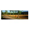 iCanvasArt Panoramic 'Hay Bales in a Field, Flens, Sweden' Photographic Print on Canvas