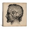 "iCanvasArt ""Head Anatomical Drawing"" Canvas Wall Art by Jean-Baptiste Marc Bourgery"