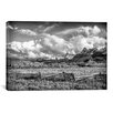 iCanvas 'Colorado Fields' by Dan Ballard Photographic Print on Canvas
