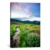 iCanvasArt 'Crested Butte Stream' by Dan Ballard Photographic Print on Canvas