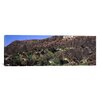 iCanvas Panoramic 'Hollywood Sign on a Hill, Hollywood Hills, Hollywood, Los Angeles, California' Photographic Print on Canvas