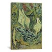 iCanvasArt 'Emperor Moth' by Vincent van Gogh Painting Print on Canvas