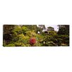iCanvasArt Panoramic Japanese Tea Garden in Golden Gate Park, San Francisco, California Photographic Print on Canvas