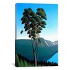 <strong>iCanvasArt</strong> 'Hillside Arbutus' by Ron Parker Painting Print on Canvas