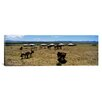 iCanvasArt Panoramic Group of Horses and Yurts in a Field, Independent Mongolia Photographic Print on Canvas