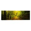 iCanvas Panoramic Dirt Road Passing Through a Forest, Vermont Photographic Print on Canvas