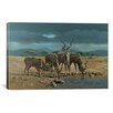 iCanvas 'Greater Kudus' by Harro Maass Painting Print on Canvas