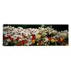 iCanvas Panoramic Flowers in a Garden, Sherwood Gardens, Baltimore, Maryland Photographic Print on Canvas