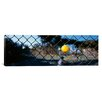iCanvas Panoramic Close-up of a Tennis Ball Stuck in a Fence, San Francisco, California Photographic Print on Canvas
