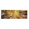 iCanvas Panoramic Low Angle View of Trees, Bavaria, Germany Photographic Print on Canvas