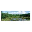 <strong>iCanvasArt</strong> Panoramic Watamu Marine National Park, Watamu, Kenya Photographic Print on Canvas