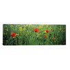iCanvasArt Panoramic Baden-Wurttemberg, Germany Photographic Print on Canvas