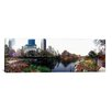 iCanvas Panoramic 'Central Park, New York City' Photographic Print on Canvas