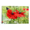 <strong>iCanvasArt</strong> Decorative Art 'Poppies and Butterfly' by Bill Makinson Graphic Art on Canvas