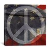 <strong>iCanvasArt</strong> Peace Sign, USA Flag, Wood Boards Graphic Art on Canvas