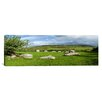 iCanvasArt Panoramic Piper's Stone, Bronze Age Stone Circle, Ireland Photographic Print on Canvas