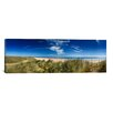 iCanvasArt Panoramic 'Marram Grass, Dunes and Beach, Winterton-on-Sea, Norfolk, England' Photographic Print on Canvas