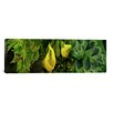 <strong>iCanvasArt</strong> Panoramic 'Leaves and Flowers' Photographic Print on Canvas