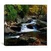 "<strong>iCanvasArt</strong> ""Little River Elkmont"" Canvas Wall Art by J.D. McFarlan"