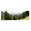 iCanvas Panoramic Dolomites, Veneto, Italy Photographic Print on Canvas