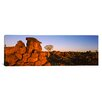 iCanvasArt Panoramic Devil's Playground, Namibia Photographic Print on Canvas