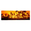 iCanvas Panoramic The Setai Hotel, Miami Beach, Florida Photographic Print on Canvas