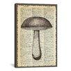 iCanvas 'Mushroom' by Erin Clark Textual Art on Canvas