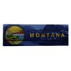 iCanvas Flags Montana Grinell Lake with Wood Planks Panoramic Graphic Art on Canvas