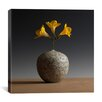 "iCanvasArt ""New Chinese Maple"" Canvas Wall Art by Geoffrey Ansel Agrons"