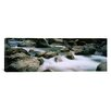 iCanvas Skokomish River, Olympic National Park, Washington State Photographic Print on Canvas