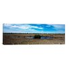 iCanvas Panoramic Wild Animals at a Waterhole, Etosha National Park, Kunene Region, Namibia Photographic Print on Canvas